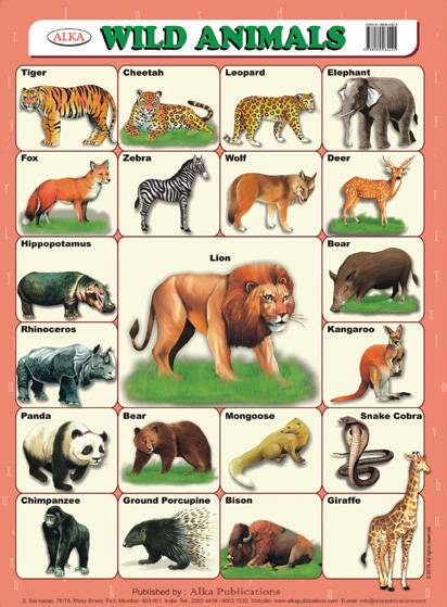 Wild animals with names